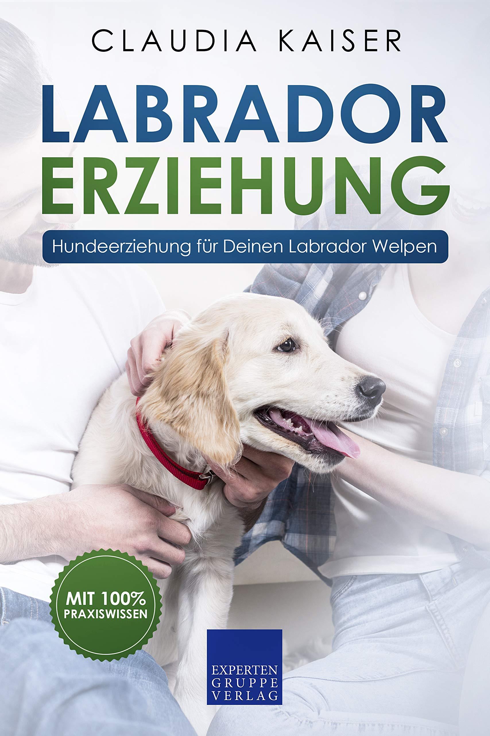 Labrador Erziehung  Hundeerziehung Für Labrador Welpen  Labrador Band 1