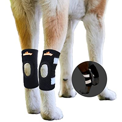 NeoAlly Dog Rear Leg Brace For Dogs With Torn ACL