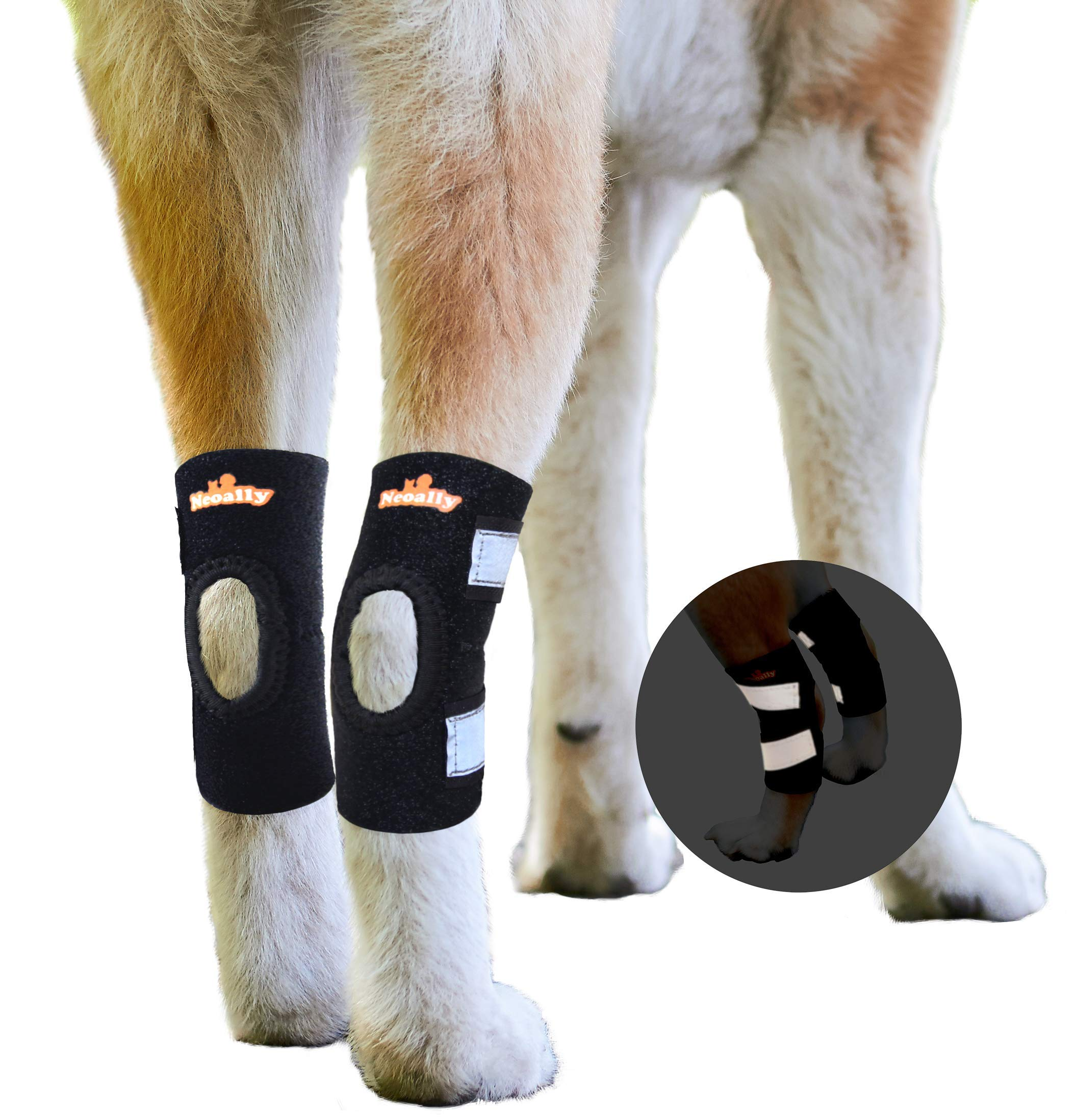 NeoAlly Dog Leg Brace [Short Version] for Small or Short Legs Canine Rear Hock Support with Safety Reflective Straps Hind Leg Wounds, Injuries and Sprains from Arthritis