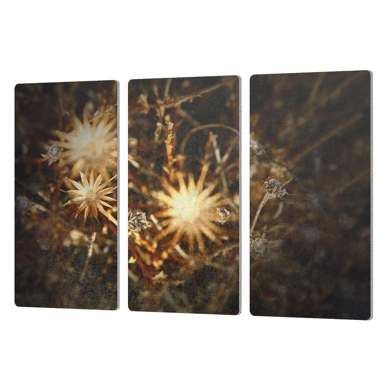 ArtWall 3 Piece Mark Rosss Falling Towards Stars Artmetalz Aluminum Print Set 24 x 36