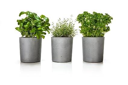 URBANATURE Beton Blumentopf mit Wasserspeicher, Kräutertopf 3´er Set ...
