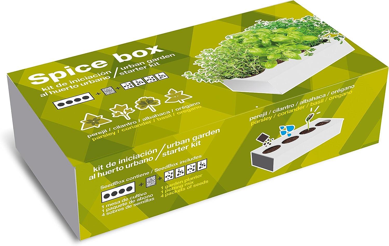 SeedBox Spice Box SBAROM - Huerto Urbano, 4 aromáticas, (albahaca ...