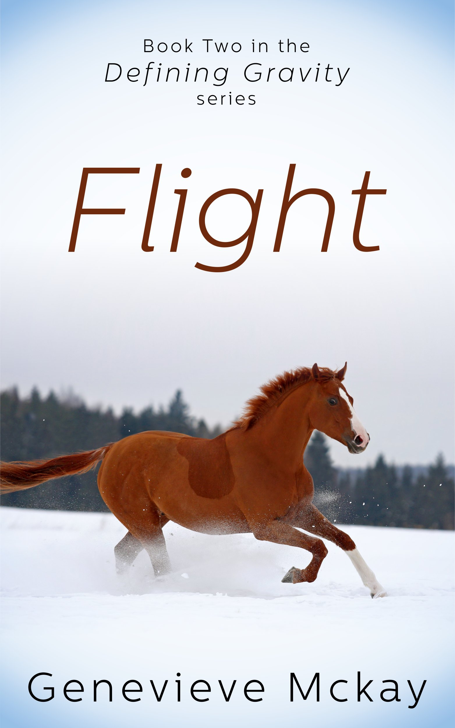Flight: Book Two in the Defining Gravity Series por Genevieve Mckay