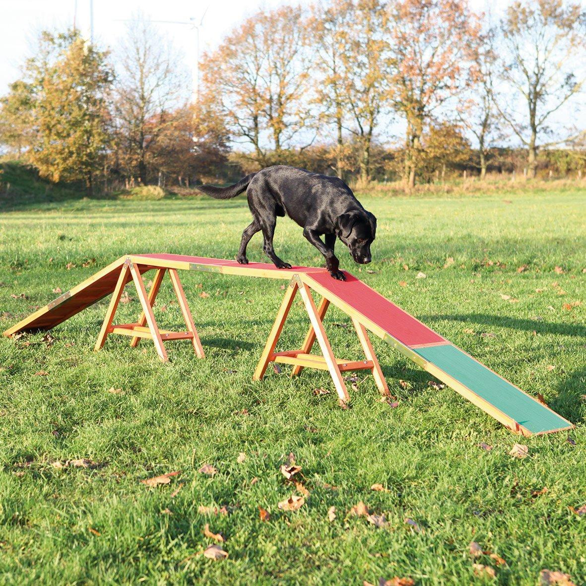Trixie 32090 Hunde Agility Steg, 456 x 30 x 64 cm