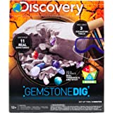 Discovery Kids Gemstone Dig Stem Science Kit by Horizon Group Usa, Excavate, Dig & Reveal 11 Real Gemstones, Includes…