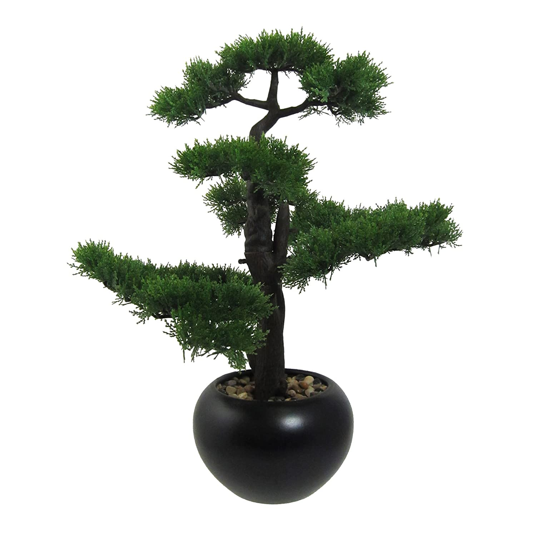 Wohnfuehlidee Kunstpflanze Bonsai Zeder grün, mit schwarzem Keramik-Topf, Höhe ca. 60 cm