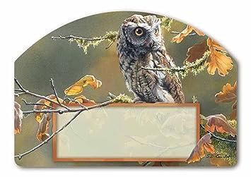 Amazoncom Autumn Owl Magnetic Yard Design W Address Numbers
