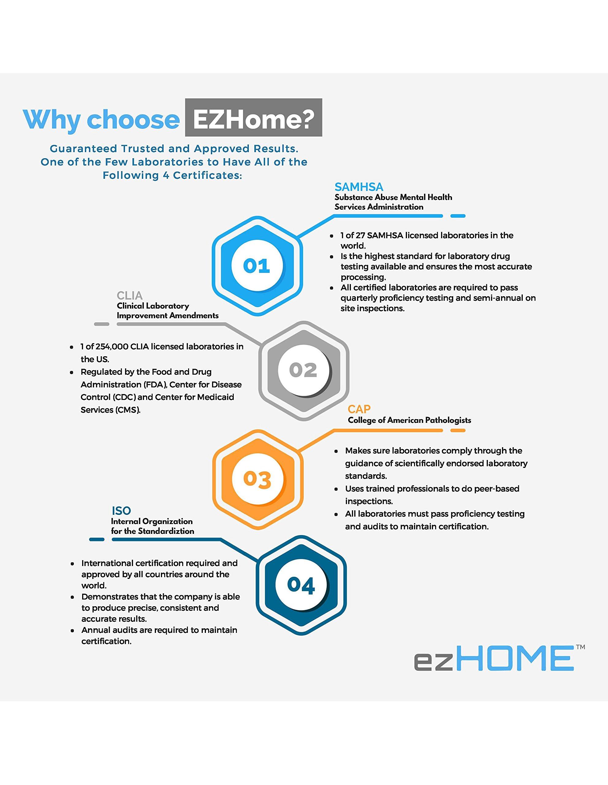 ezHOME Hair Follicle 18 Drug Compound Test - 1005-9950-FBA