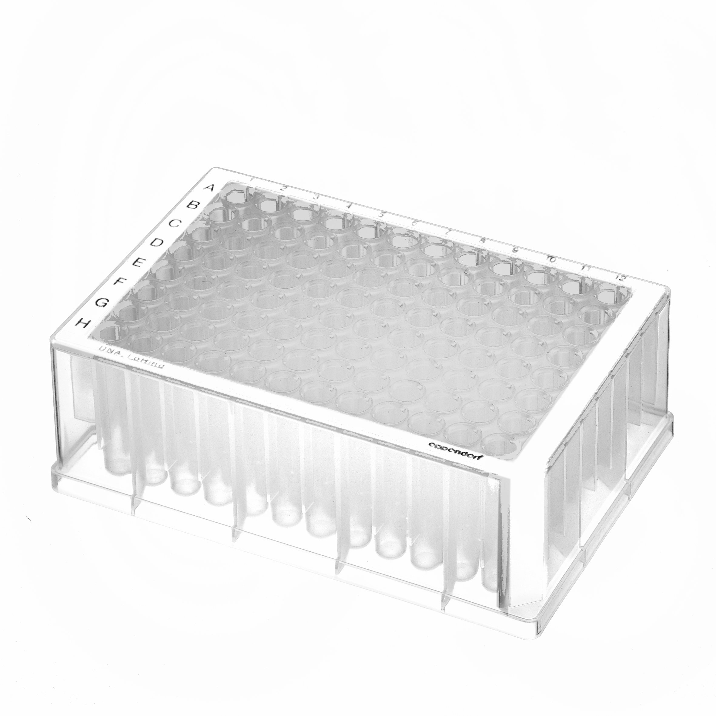 Eppendorf 951032905 Protein LoBind Deepwell Plate with 96 Wells, 1000 microliter Volume, White Border (Pack of 20)