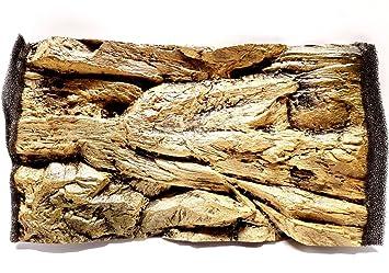 Aqua Maniac - Fondo para acuario 3D, diseño de roca beige, polirresina (no espuma), 4-6 cm de grosor, decoración acuática única: Amazon.es: Productos para ...