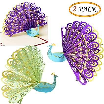 Amazon 3d Peacock Pop Up Happy Birthday Cards Greeting