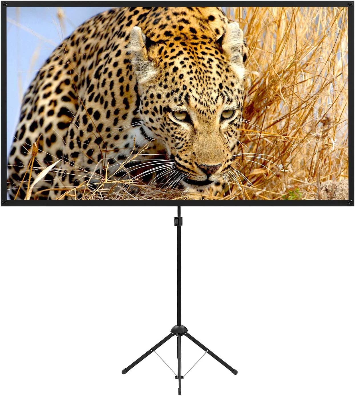 Portable Projector Screen with Stand, Outdoor Movie Screen, 80 Inch 16:9 Light-Weight, Mobile and Compact, Easy Setup and Carrying, Projection Screen with 1.2 Gain Glass Fiber, Idea for Home Cinema