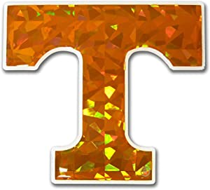 Elektroplate Tennessee Volunteers NCAA Reflective 3D Decal Domed Auto Sticker Emblem