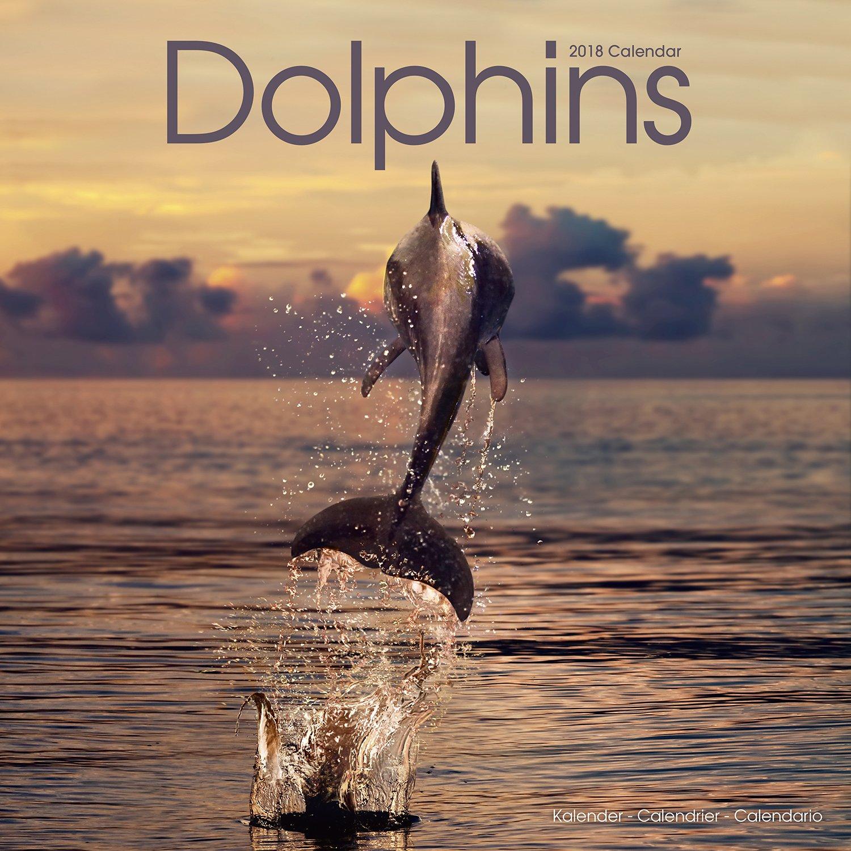Dolphin Calendar - Ocean Calendar - Calendars 2017 - 2018 ...