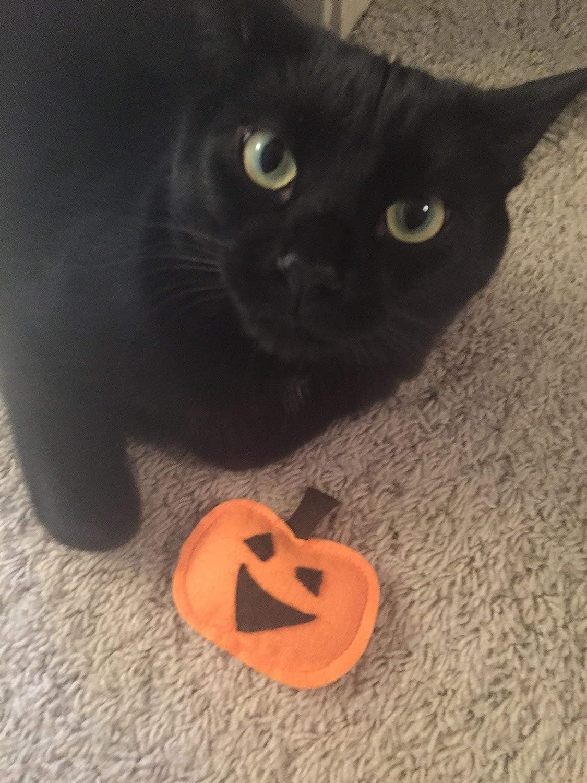 Jack O Lantern Organic Catnip Cat Toy