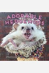 Adorable Hedgehogs Mini 2019: 16-Month Calendar - September 2018 through December 2019 Calendar