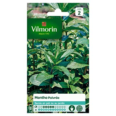 Seed Bag Peppermint Vilmorin : Garden & Outdoor