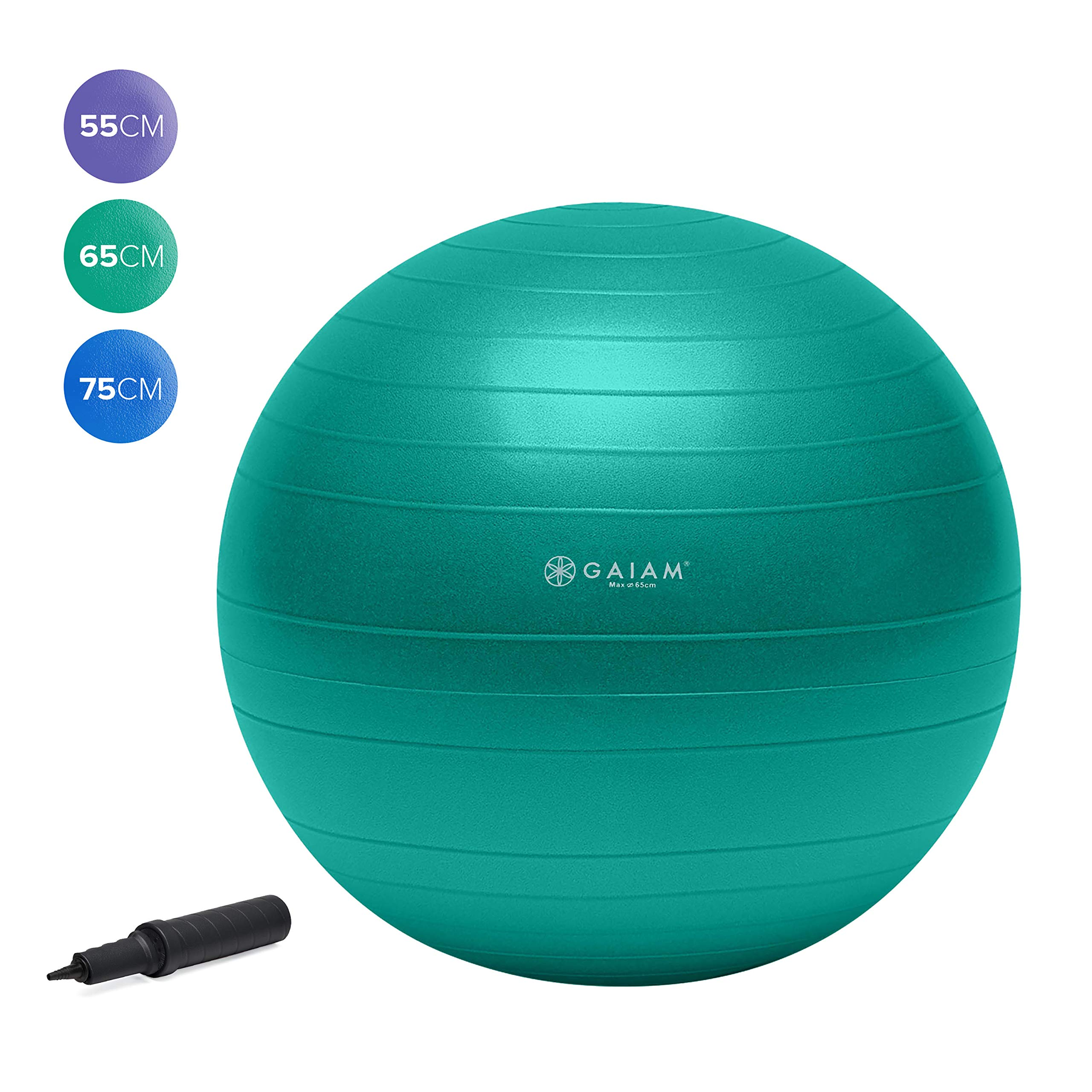 Gaiam Total Body Balance Ball Kit - Includes 65cm Anti-Burst Stability Exercise Yoga Ball, Air Pump, Workout Program by Gaiam