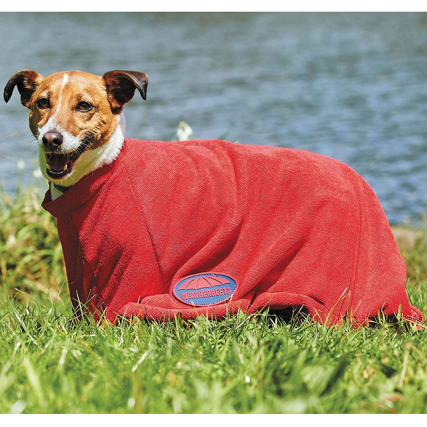 Red 3XL Red 3XL Weatherbeeta Dry-dog Bag (3XL) (Red)