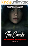 The Cracks (The Chronicles of Witness Protection Book 3)