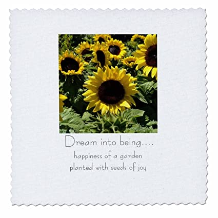 Amazon.com: 3dRose qs_23705_1 Sunflower Seeds of Joy Quilt Square ...