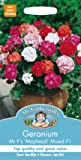 Mr. Fothergill's 14300 Geranium Mophead Selection Mixed F1 Flower Seeds