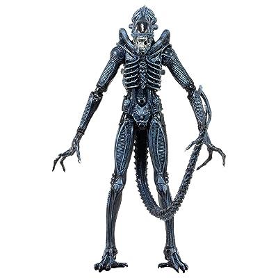 Aliens Série 2 - Guerrier Xenomorph