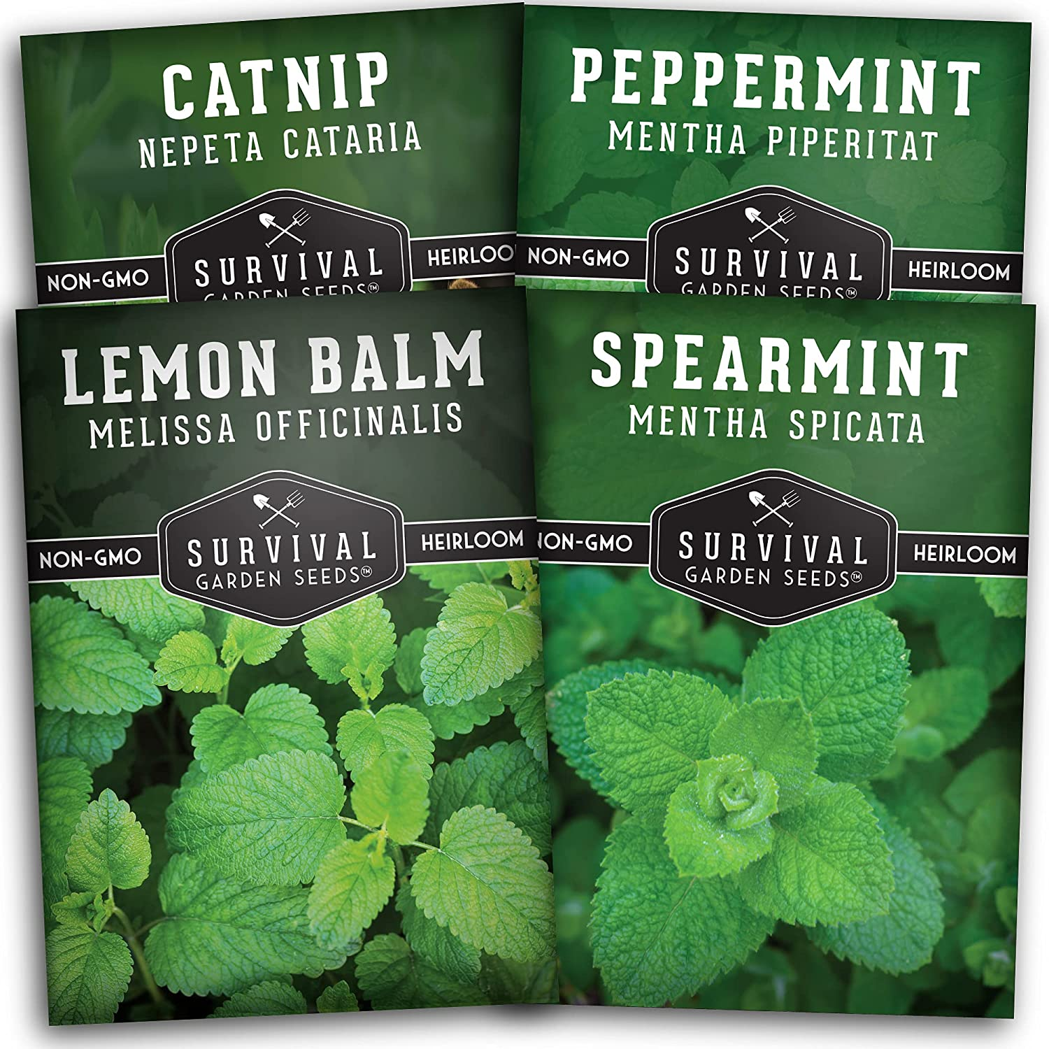 Survival Garden Seeds Mint Collection Seed Vault - Non-GMO Heirloom Herb Seeds for Planting and Growing - Peppermint, Spearmint, Lemon Balm and Catnip Seeds to Grow in Containers or in The Garden