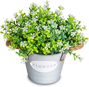 MIXROSE Artificial Plants Greenery Faux Eucalyptus Leaves and Flowers in Rustic Pot Artificial Flower Small Fake Plants Farmhouse Plant Decor for The Home Office Hotel Cafe Indoor (White)