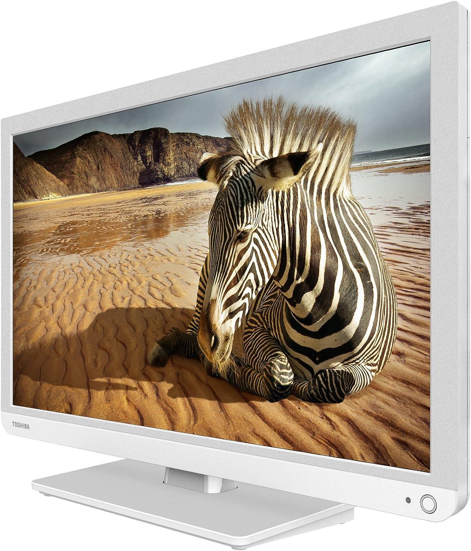 Toshiba 24W1334 - Televisor LED de 24