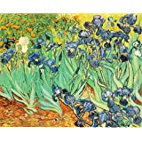 Diy oil painting, paint by number kit- worldwide famous oil painting Irises by Van Gogh 16*20 inch.