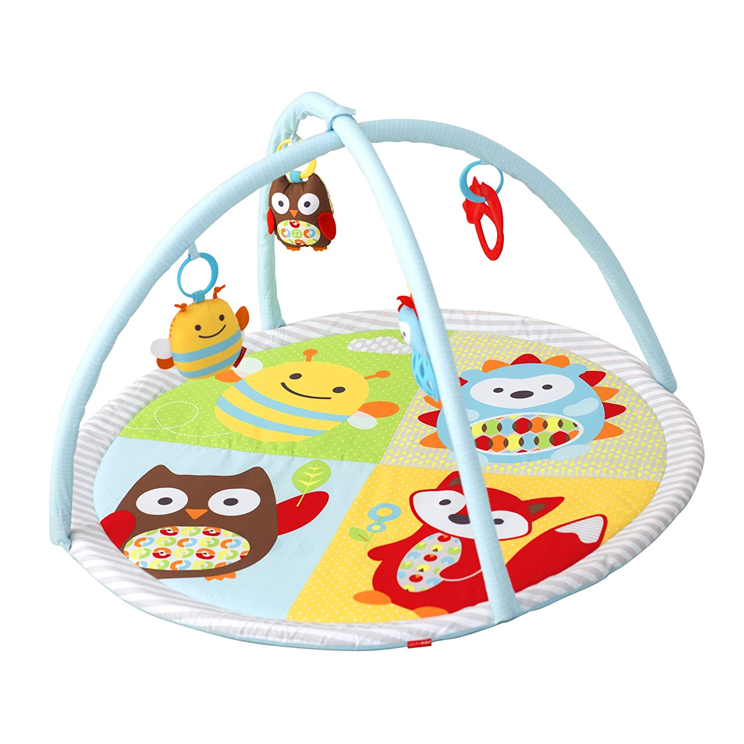 Skip Hop Explore More Funscape Activity Gym, Multi