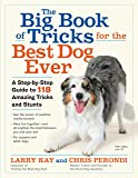 The Big Book of Tricks for the Best Dog Ever: A Step-by-Step Guide to 112 Amazing Tricks and Stunts