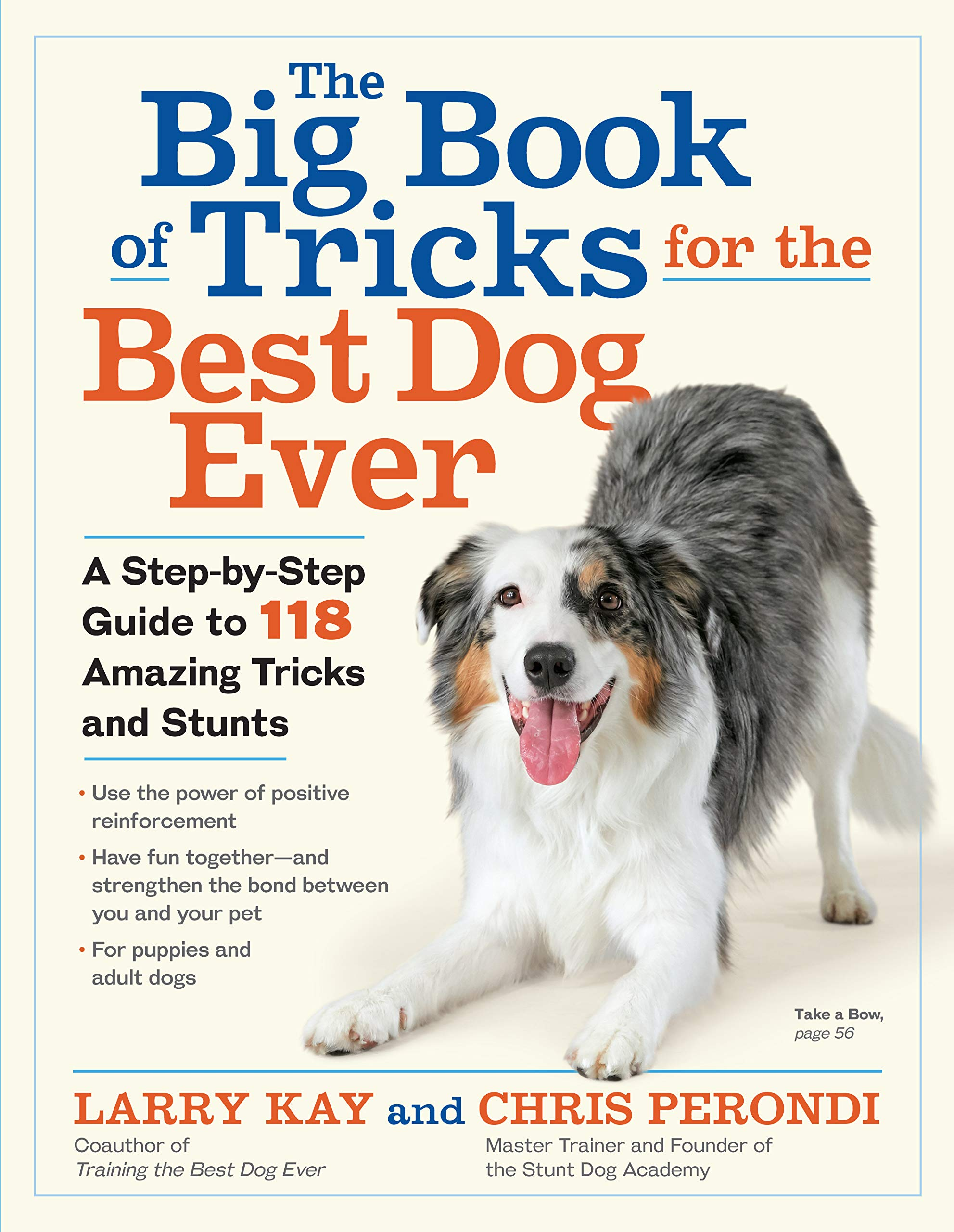 The Big Book of Tricks for the Best Dog Ever: A Step-by-Step Guide to 118 Amazing Tricks and Stunts by Workman Publishing Company