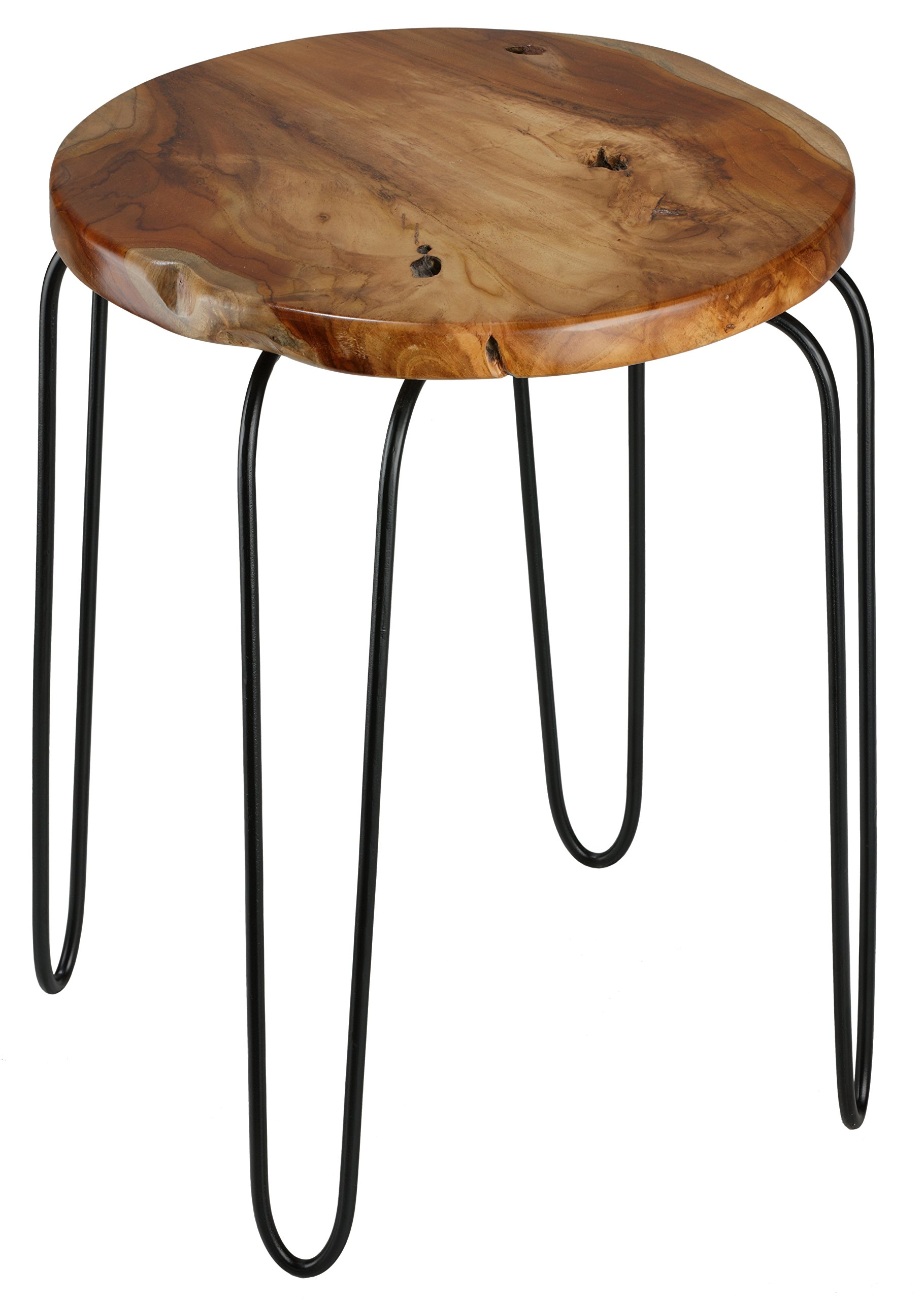 Lacie End Table with Teak Root Top
