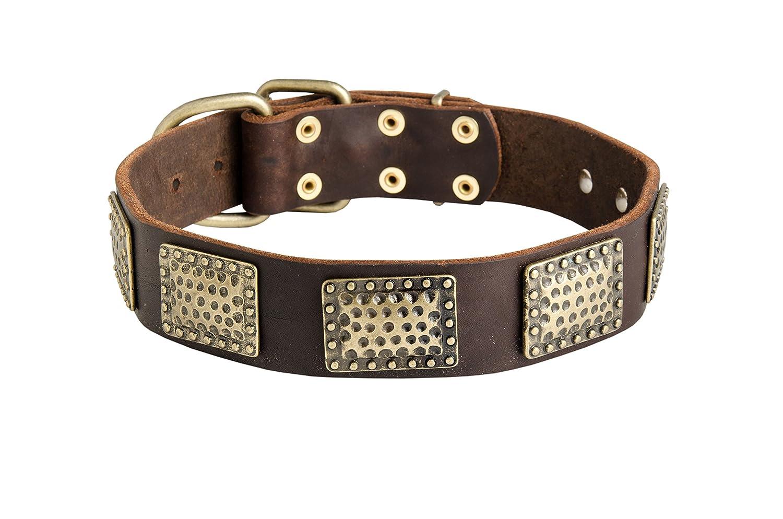 ForDogTrainers Decorato in Pelle Collare con Piastre in Ottone Vintage – Comfort Luxurious – 1 1 2 inch (40 mm) di Larghezza