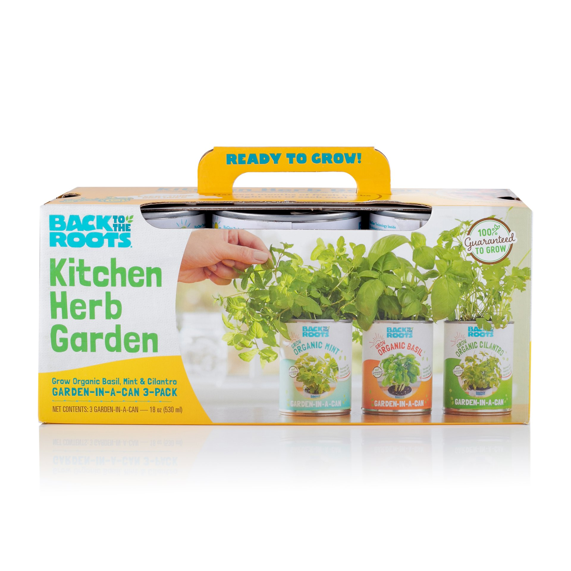 Back to The Roots Garden-in-a-Can Kitchen Herb Garden 3 Pack Variety Basil/Cilantro/Mint. DIY Indoor Organic Herb Growing Kit Grow Edible Herbs in Your Home Perfect Cooking Gift by Back to the Roots