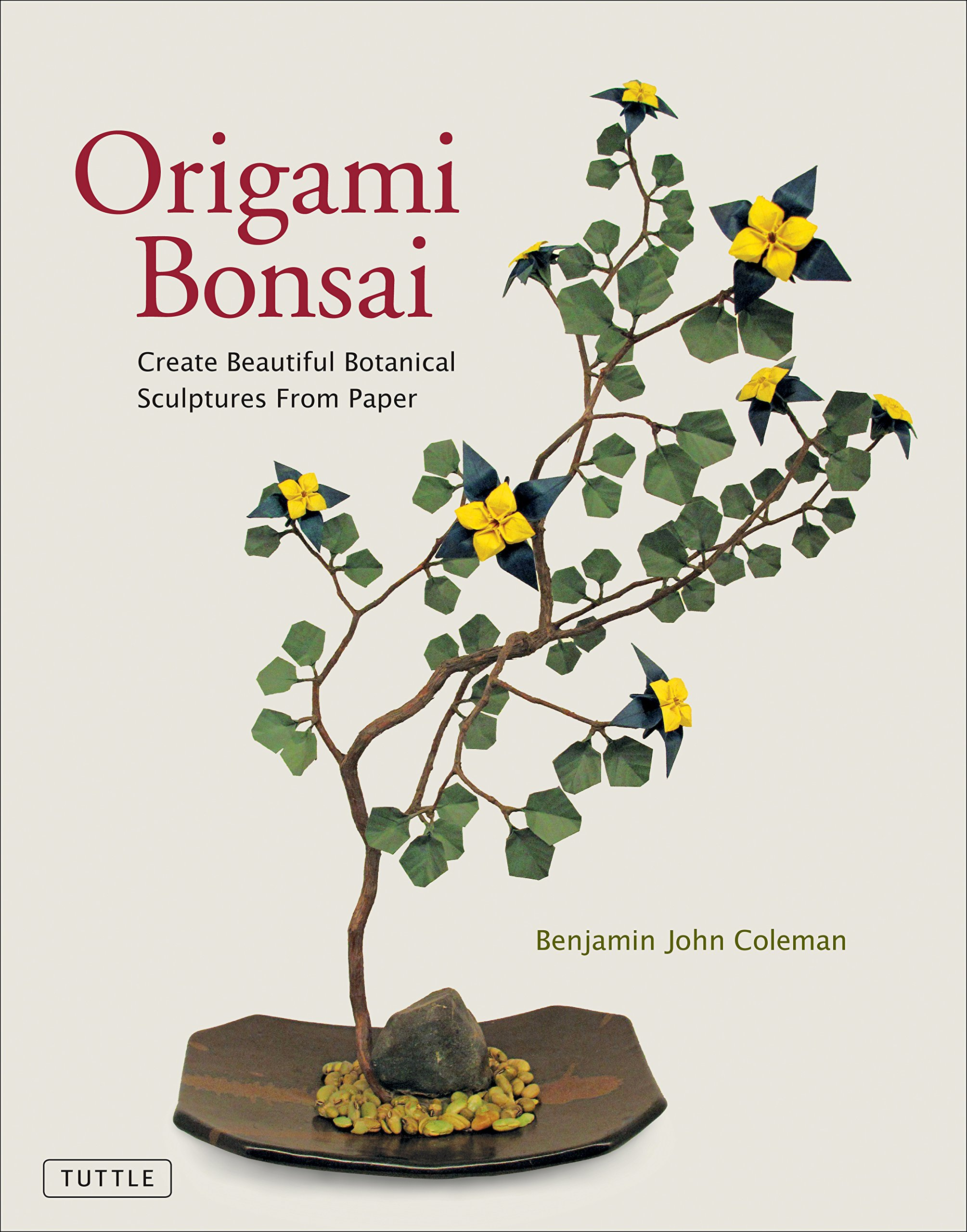 Origami Bonsai: Create Beautiful Botanical Sculptures From Paper: Origami Book with 14 Beautiful Projects and Instructional DVD Video ebook