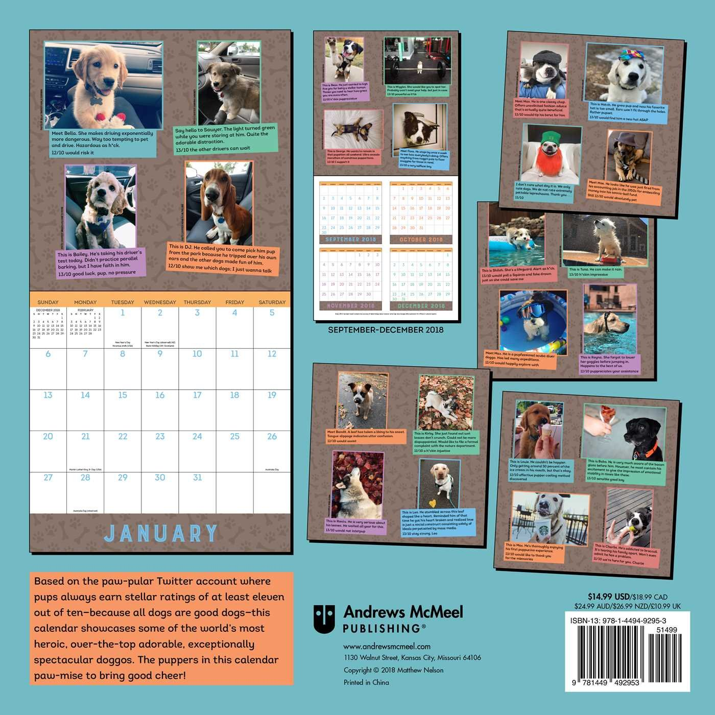WeRateDogs 2019 Wall Calendar by Andrews McMeel Publishing (Image #2)