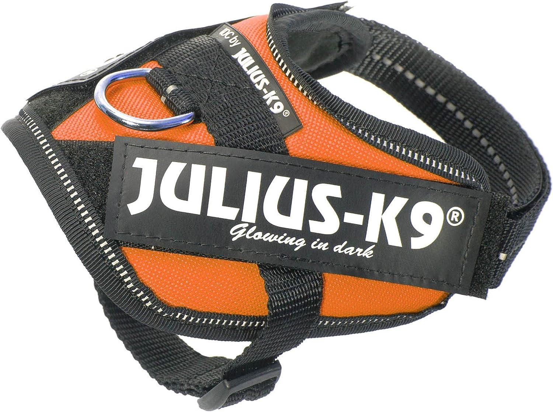 Julius K9 16idc Or B1 Idc Powerharness Size Baby 1 Orange Pet Halter Harnesses Pet Supplies