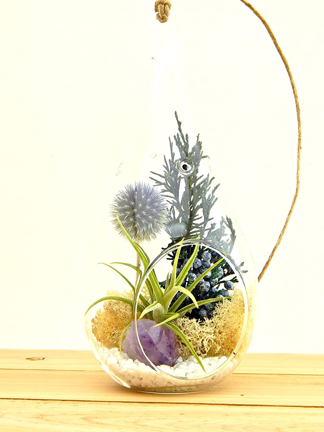 "Bliss Gardens Air Plant Terrarium Kit with 7"" Teardrop Glass / Purple Amethyst Crystal / Shabby Chic"