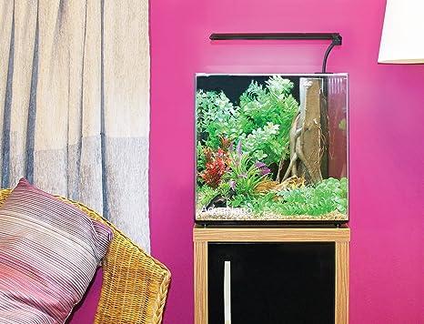 Aqua One Aqua Nano 40 55L Complete Tropical Glass Aquarium Set, 40 ...