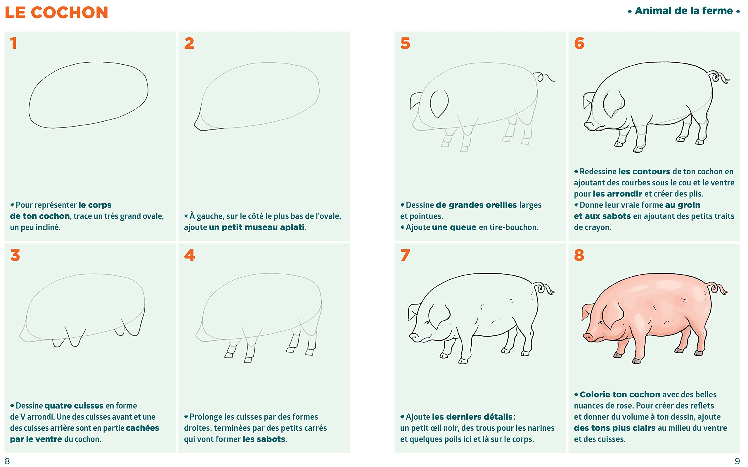 Amazon Fr Simplissime Le Livre Pour Dessiner Des Animaux