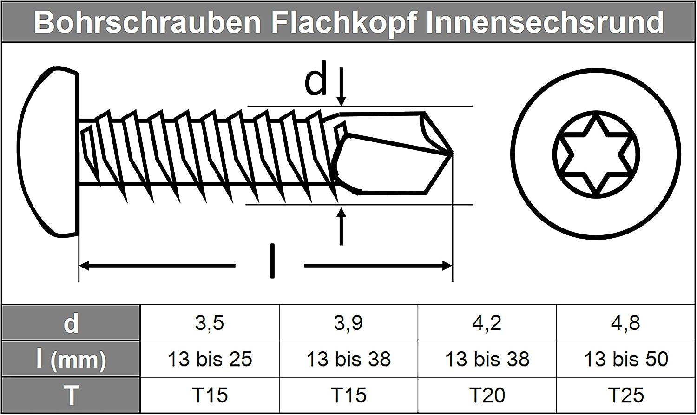 TORX Bohrschrauben 4,8 X 19 DIN 7504 Form M Innensechsrund-Antrieb 20 St/ück Linsenkopf u selbstschneidend Edelstahl A2 - V2A Schnellbauschrauben m z.B. Aluminium f/ür Weichmetalle