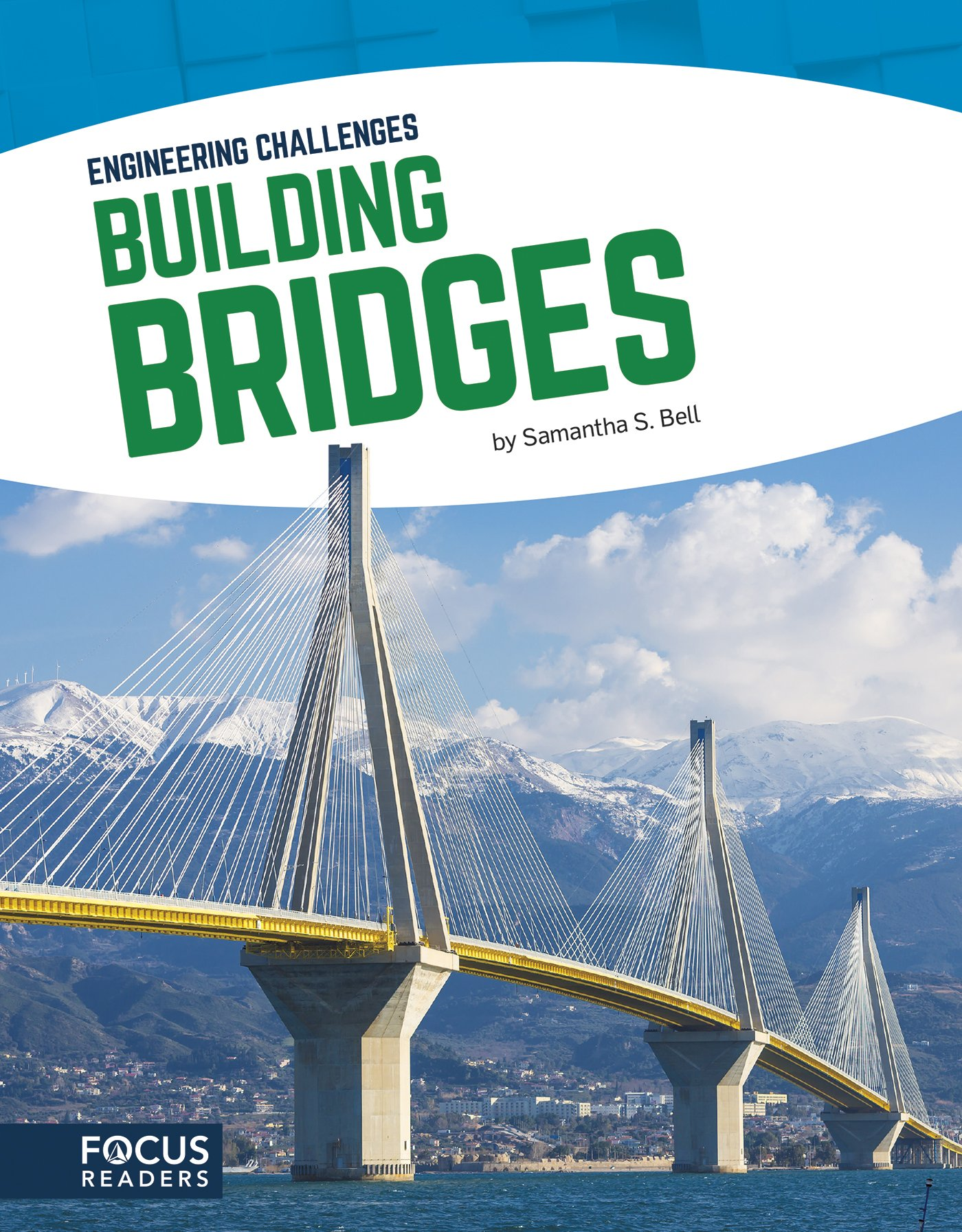 Building Bridges (Engineering Challenges) PDF