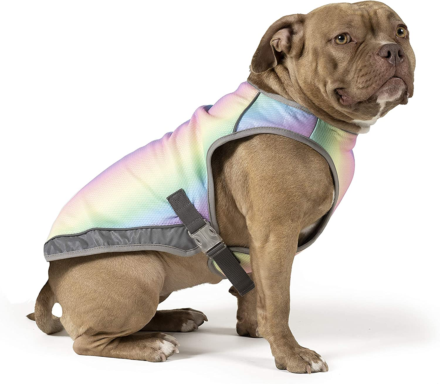 Canada Pooch | Chill Seeker Dog Cooling Vest | Water Evaporative and Adjustable