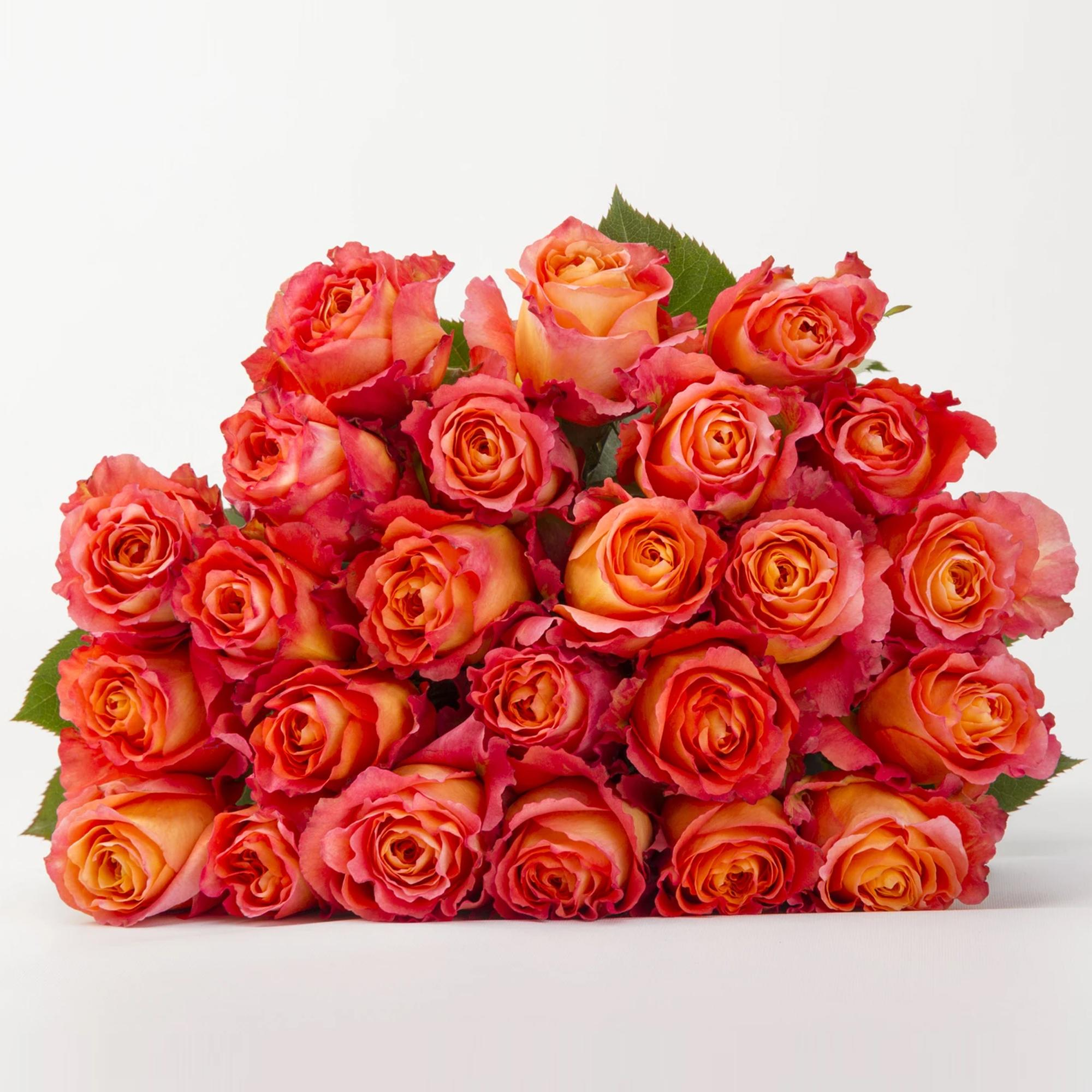 BloomsyBox - Beautiful Bouquets Subscription: Long Stem Roses