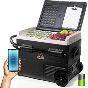 Portable Freezer Cordless Camper Refrigerator Dual Temperature APP Control Rechargeable Battery, 12Volt Car Fridge, 48 Quart (45L) -4℉-68℉ Electrical Appliances Cooler for Outdoor, Truck, Boat, Travel (47 Quart (45L))