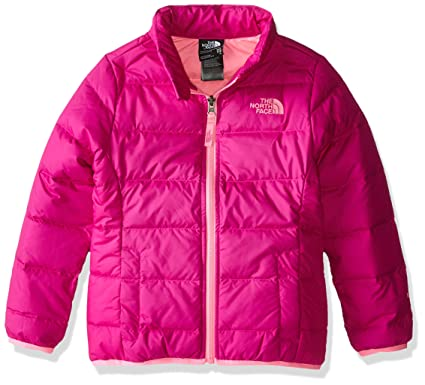 7b32f4ed4 The North Face Kids Girls Andes Down Jacket (Little Big Kids), Luminous Pink