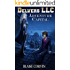 Delvers LLC: Adventure Capital